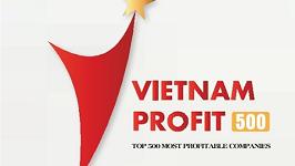 Top 500 Most Profitable Vietnam Companies 2020